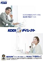 KDDI 光ダイレクト