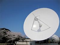 インマルサット用アンテナと桜
